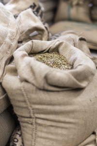 Zdjęcie przedstawiające worek z zielonym ziarnem kawy.