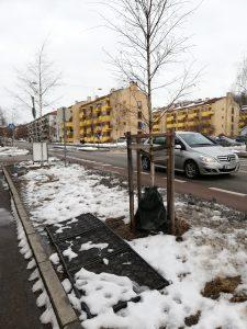 Eko-maty do ochrony drzew i gleb przed solą drogową