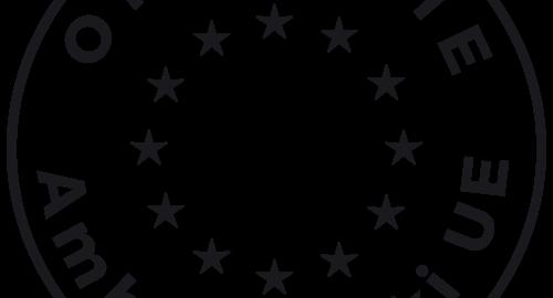 Okrągła ikona z 12 gwaizdkami unijnymi i napisem opolskie ambasadorki UE