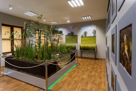 Widok na salę edukacji przyrodniczej Zespołu Opolskich Parków Krajobrazowych w Ładzy